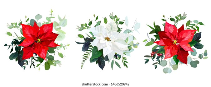 Red poinsettia flowers, christmas greenery, emerald eucalyptus, mix of seasonal plants and berries vector design bouquets. Winter chic wedding or party floral decor. Isolated and editable.