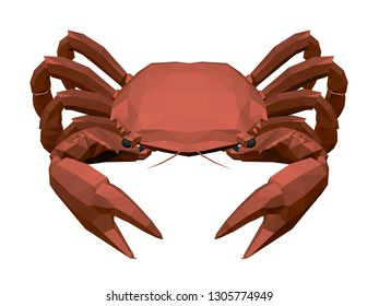Red polygonal crab on a white background. Front view. Isometric. 3D. Vector illustration.