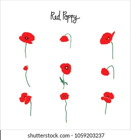 Red Poppy Flowers Clipart Green Cable Stock Vector Royalty Free