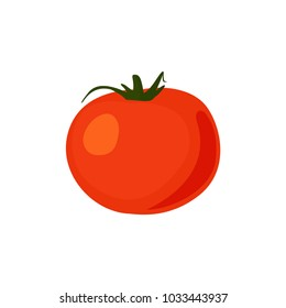 Red ripe tomatoes vector illustration isolated on white.