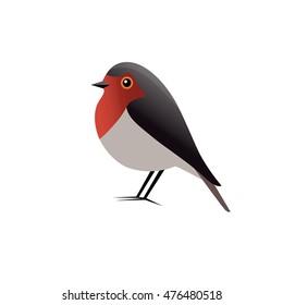 Red Robin Bird Vector illustration
