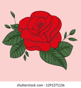 Red rose, Romantic rose in valentines day, vector art