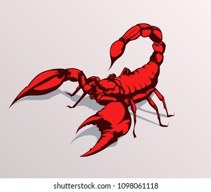 Red scorpion vector illustration on grey isolated background