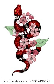 red snake vector and Cherry flower spring season vector illustration background.Poster design Red snake Reptile and Sakura flower for printing and tattoo.