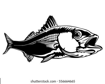 Red snapper isolated on white vector illustration. Silhouette of fish.