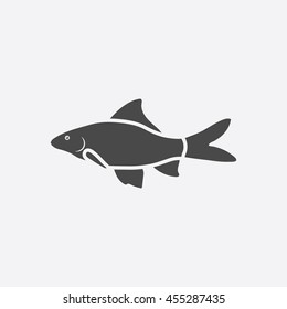 Red Tail Shark fish icon black. Singe aquarium fish icon from the sea,ocean life collection.