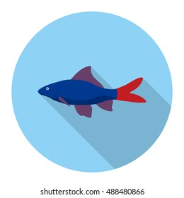 Red Tail Shark fish icon flat. Singe aquarium fish icon from the sea,ocean life long shadow.
