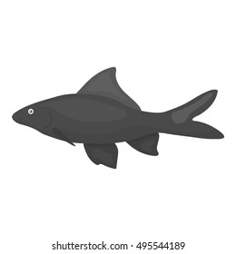 Red Tail Shark fish icon monochrome. Singe aquarium fish icon from the sea,ocean life monochrome.