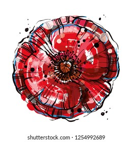 Red vector poppy flower. Big blossom vector flower, Hand drawn poppy flower.