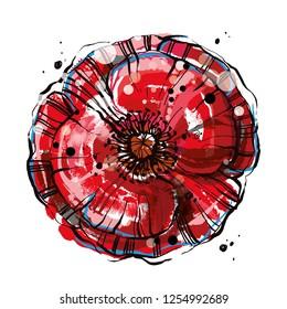 Red vector poppy flower. Big blossom vector flower, Hand drawn poppy flower.