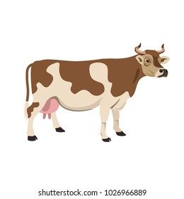 Red and white spotted cow. Vector illustration isolated on white background