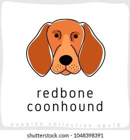 Redbone Coonhound : Dog Breed Collection : Vector Illustration
