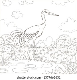 Red-crowned crane bird by a small lake among cane, grass and flowers of a meadow on a summer day, black and white vector illustration in a cartoon style