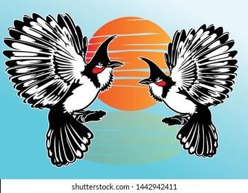 Red-whiskered bulbul bird vector design