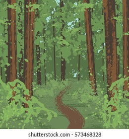 Redwood National Park in California, USA. Illustration of forest