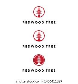 redwood tree logo design vector icon illustration inspiration