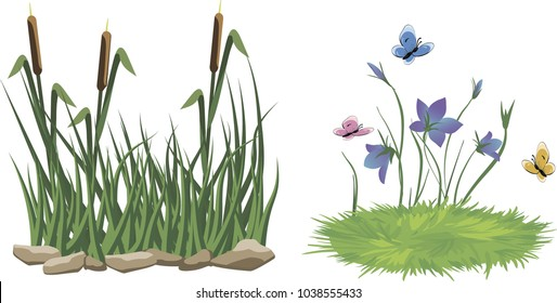 Reeds in grass, stones and flowers set isolated on white background