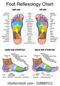 Foot Reflexology Images, Stock Photos & Vectors   Shutterstock