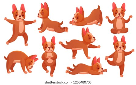 Relax yoga dog. Animal sport fitness training, dogs doing healthy relaxing exercise and beagle meditation. French bulldog stretching training posture. Catroon vector illustration isolated icons set