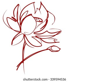 Religion, symbol, lotus, water lily, lily,Drawing vector graphics with floral pattern for design. Floral flower natural design. Graphic, sketch drawing. lily,
