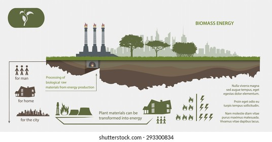 Renewable energy from biomass energy illustrated infographics
