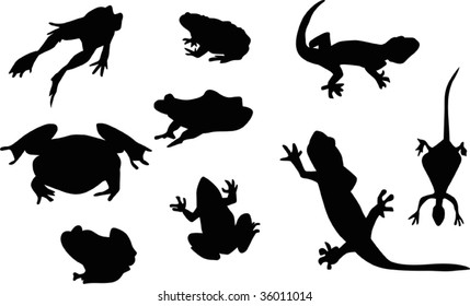 reptile and frog silhouettes isolated on white background