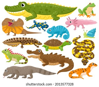 Reptiles and amphibians. Cartoon frog, chameleon, crocodile, lizard and turtle, wildlife animals vector illustration set. Serpent, reptile and amphibians. Frog and chameleon, turtle and crocodile
