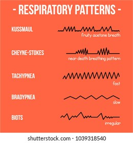 Respiratory Patterns. Easy to use in illustrator eps 8.