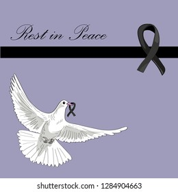 Rest in Peace. Flying pigeon with black ribbon on lila background. Vector illustration of white pigeon flying. RIP