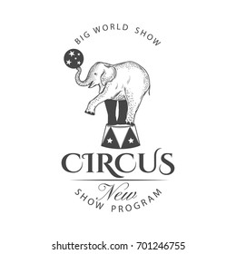 Retro circus label isolated on white background.