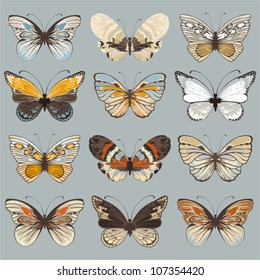 Retro collection vector butterflies