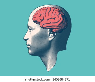 Retro color engraving drawing human head with brain inside illustration isolated on green background