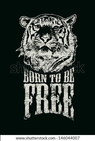 gratis africano teen micio xxx vidyeo