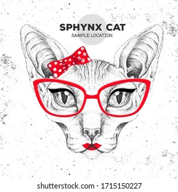Retro Hipster animal sphynx cat. Hand drawing Muzzle of animal cat. Girl of 60s