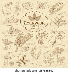Retro illustration of Ayurvedic herbs. Set of web elements for the design