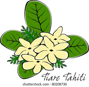 Retro Tropical Tahitian Tiare Flowers and Leaves Vector Illustration