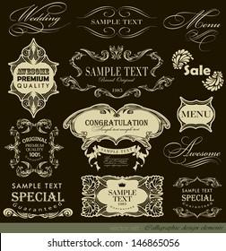 Retro Vintage calligraphic design elements/ typography Design /vector set