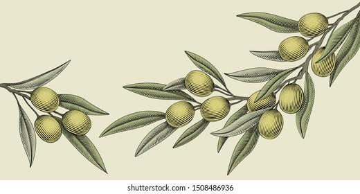 Retro woodcut style olive illustration elements for design use