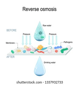 reverse osmosis use the membrane to act like an extremely fine filter to create drinking water from contaminated water. Pressure forcing water molecules through the membrane