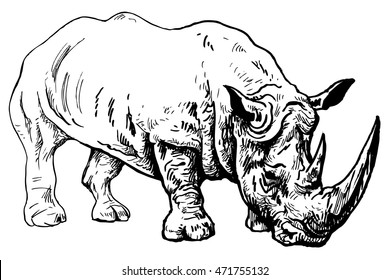 Rhinoceros - endangered species animals from the Red Book - vector illustration isolated on white