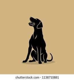 Rhodesian Ridgeback dog - isolated vector illustration