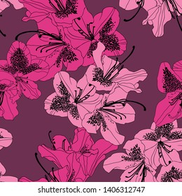 Rhododendron Cosmopolitan flowers in lighter and deeper intensive pink colour with black outline on deep raspberry colour background. Seamless vector pattern.