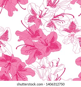 Rhododendron Cosmopolitan flowers in white and pink colour and deeper pink outline on white background. Seamless vector pattern