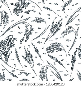 Rice cereal ears, vector seamless pattern. Sketch hand drawn illustration. Asian food package background.