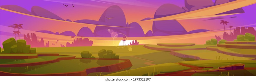 Rice field terraces, green paddy at sunset. Vector cartoon illustration of summer landscape with crop plantation on hills at evening. Asian terraced farmland, sun and palm trees silhouettes