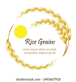 Rice Grains logo. Golden ears of rice with morning sun in circle shape , isolated on white background. Free space for text. Vector Illustrator