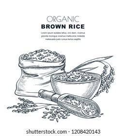 Rice label design template. Sketch vector illustration of cereal ears, bowl, wooden spoon and sack. Organic rice package background.