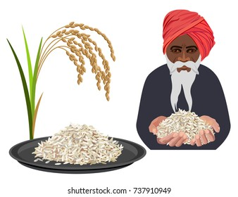Rice set with a farmer. Vector illustration isolated on a white background