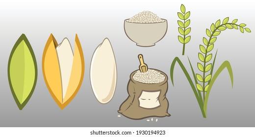 Riz. Icônes de grains, sac de riz, riz cuit dans un bol. Riz. Illustration vectorielle dessinée à plat.