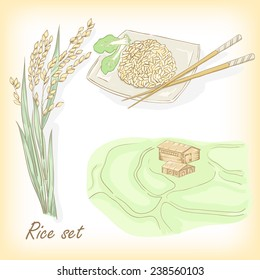 Rice set. Spikelet of rice, rice porridge, rice field, hand drawn vector illustration